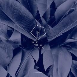Nevraska, Grave Romance, 1er album, Serge Morattel